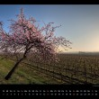 pfalz-kalender-2016-bild